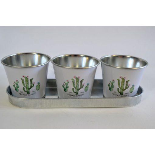 Kaspó kaktuszos mintával