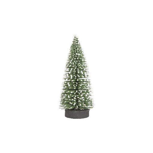Havas fenyőfa 10 cm