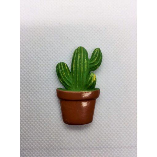 Kaktusz 2.